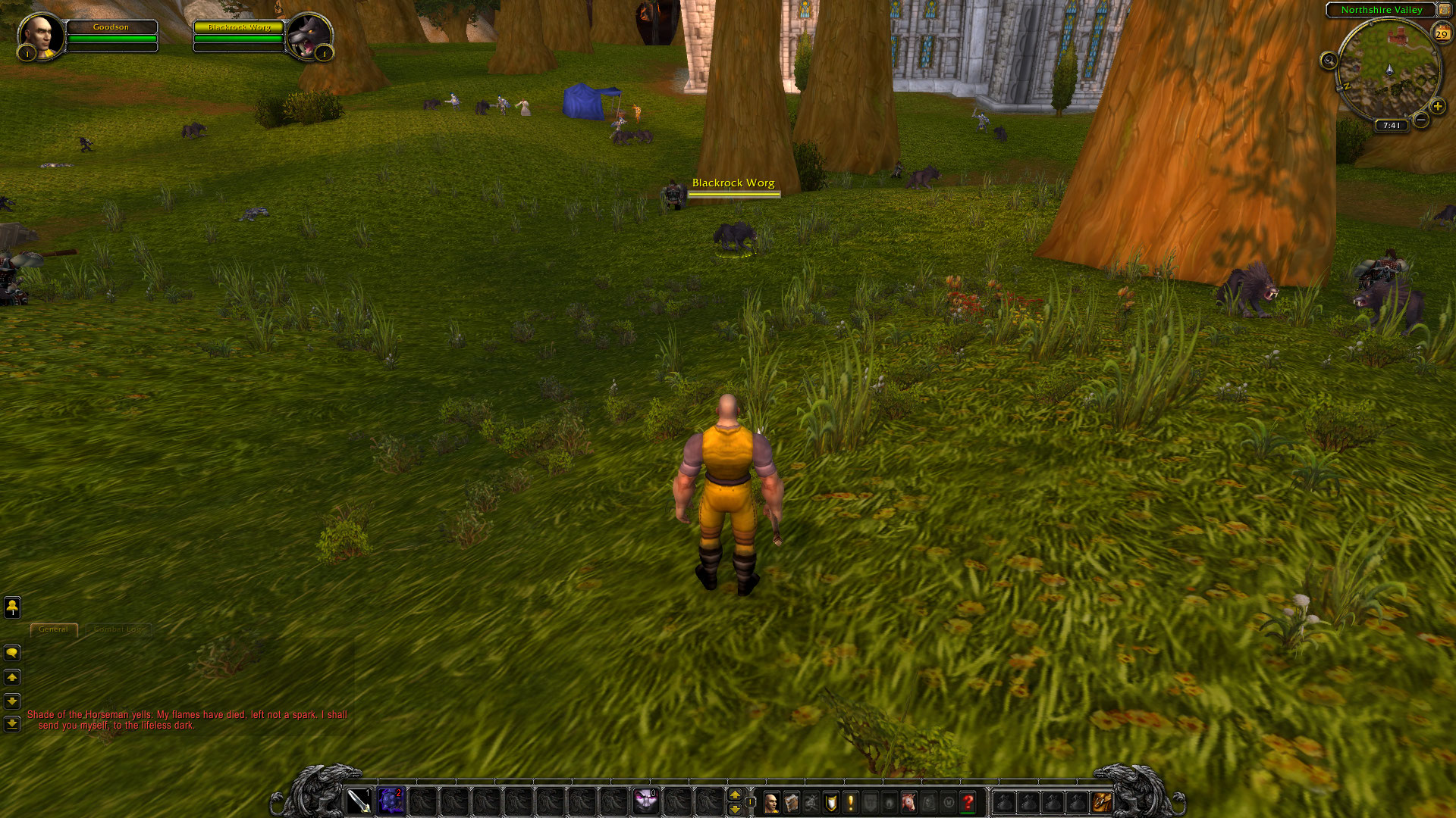 A screenshot from World of Warcraft with the default user interface